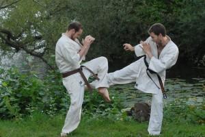 Kyokushin – Fotograf: Magnus Hartman